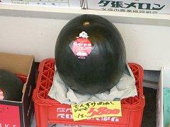0407_densukesuica.jpg