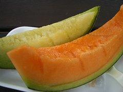 0407_melon.jpg