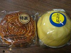 0409_tsukimi.jpg