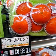 ankoru_orange.jpg