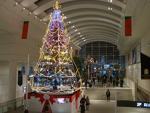 0511_qc_xmastree1